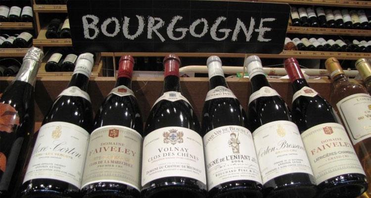 burgundy wine varieties