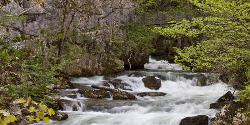 gorges of taubenloch